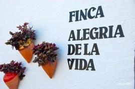 Finca-Alegria-de-la-Vida-betekent-Levensvreugde-Wi