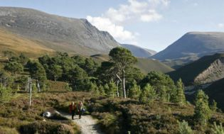 Rothiemurchus-Estate-Cairngorms