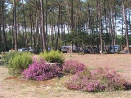 camping-cigales-aire-naturelle-49842-4_w500