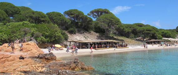 i-pini-de-strandtent-op-het-bijzondere-palombaggia