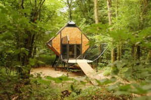 bird-nest-cabin-perched-in-french-forest-1-thumb-660x438-2861