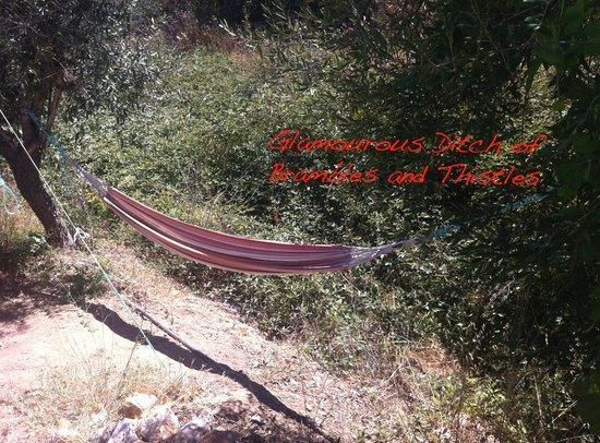 hammock-of-no-return