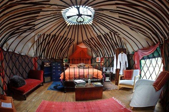 chestnut-tree-yurt