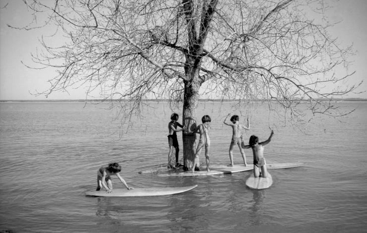Surfwise_Summer2008