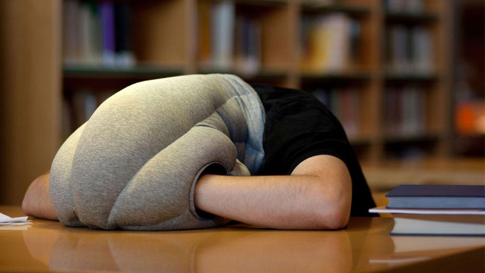 ostrich-pillow.jpg
