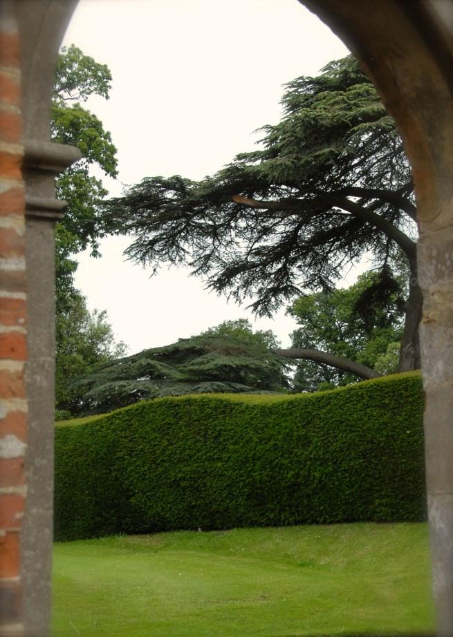 Hedge at Blickling Estate, Norfolk Photo: Hanne Siebers