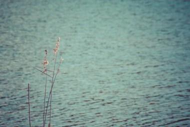 minimalistic_16