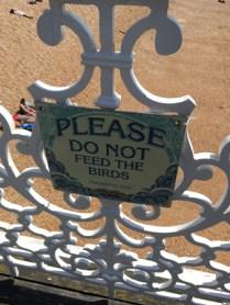 Mata inte fåglarna, är du snäll!