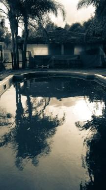 Lime-green Pool