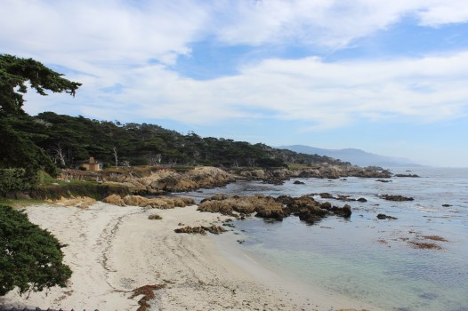 viewpoint-on-pebble-beach-drive