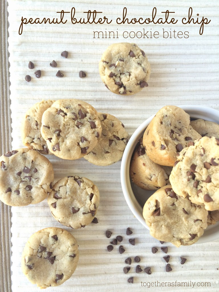 peanut butter chocolate chip mini cookie bites