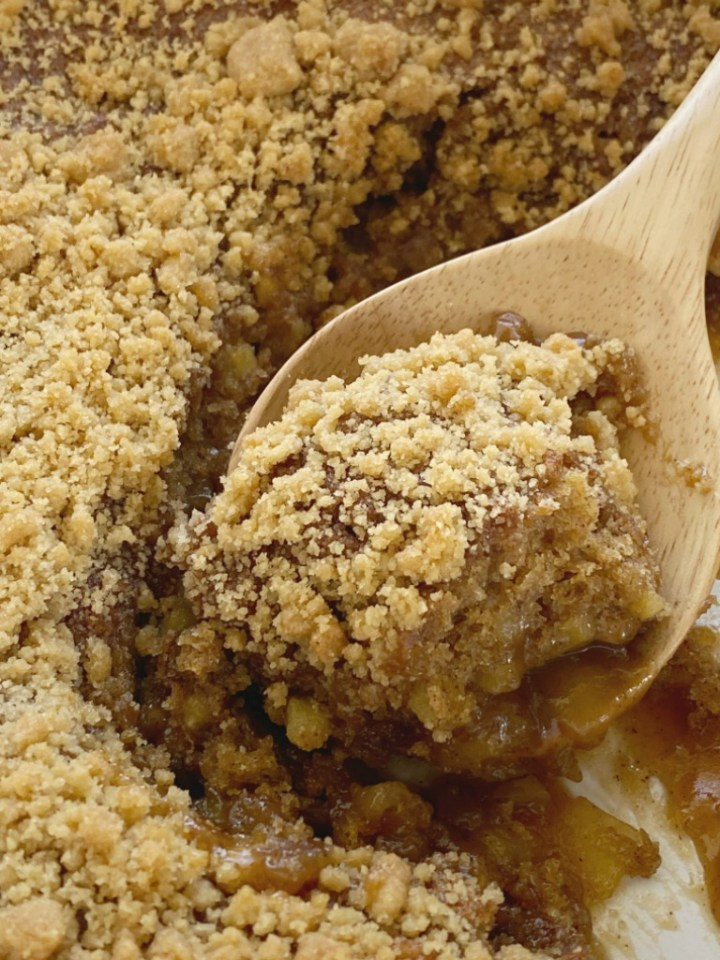 Apple Cider Pudding Cake is a soft & fluffy apple spiced cake that creates it's own apple cider caramel syrup as it bakes! Topped with a brown sugar streusel for crunch and then served with vanilla ice cream.