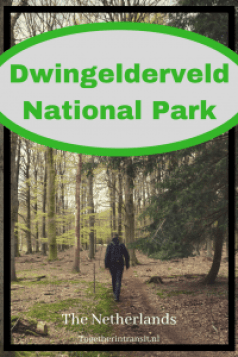 Weekend at Dwingelderveld National Park in the Netherlands