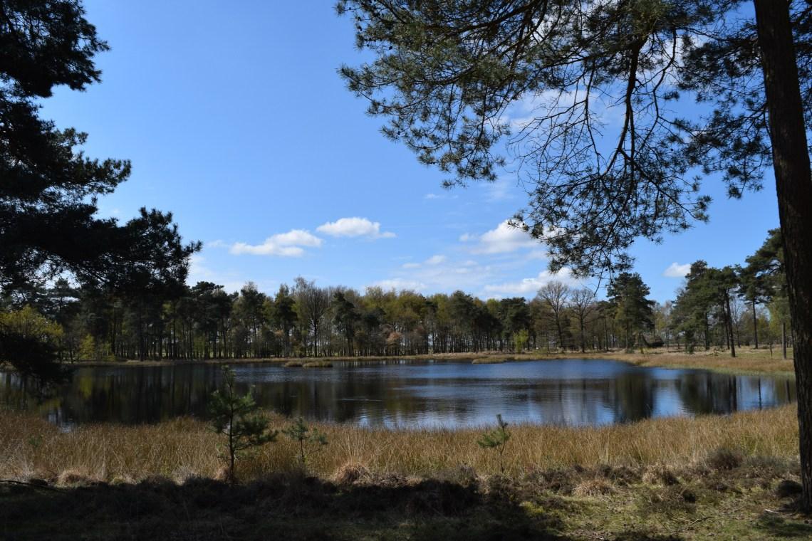 Dwingelderveld National Park