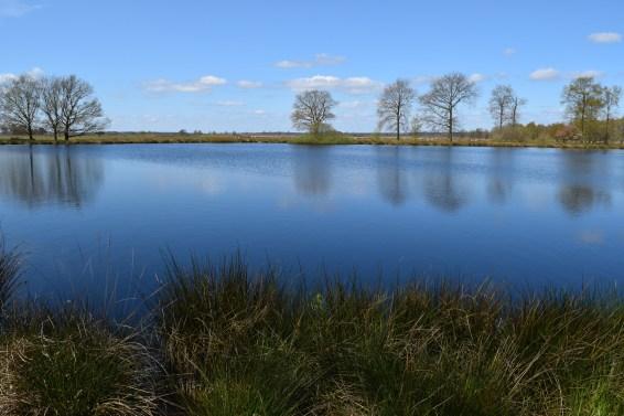 Weekend at Dwingelderveld National Park
