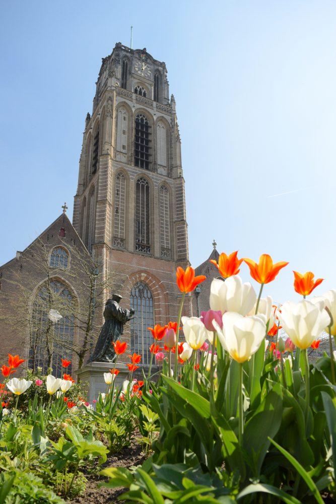 Tulips at Laurenskerk - Spring in Rotterdam togetherintransit.nl Spring Time Photography