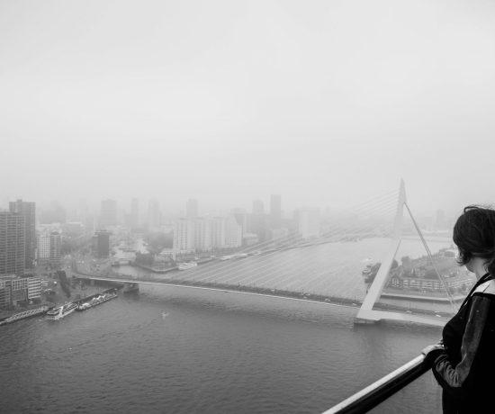 Dakendagen Rotterdam Rooftop Days at the World Port Center