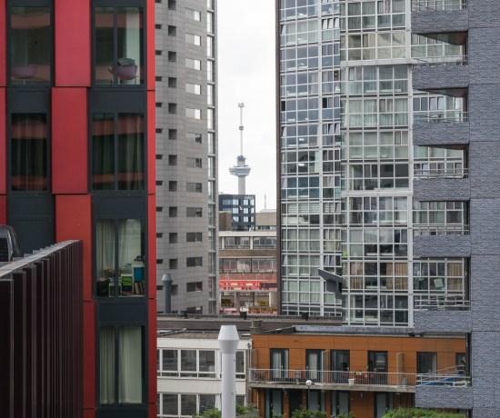 Day of Architecture Peeking To Euromast Rotterdam 2018