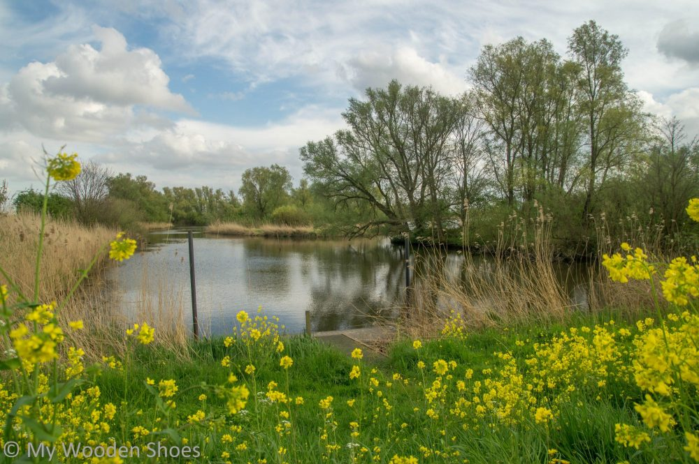 National Parks of the Netherlands - The Biesbosch in Zuid Holland