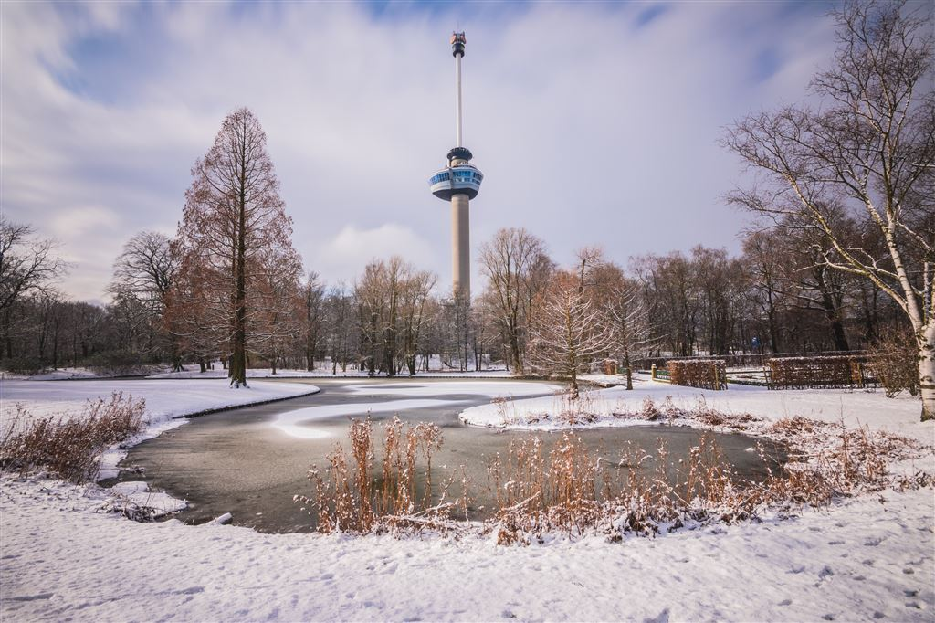Ice Skating at Het Park by the Euromast - Things to do in Rotterdam in Winter