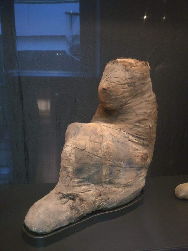 Egypt Planning - A mummified Monkey