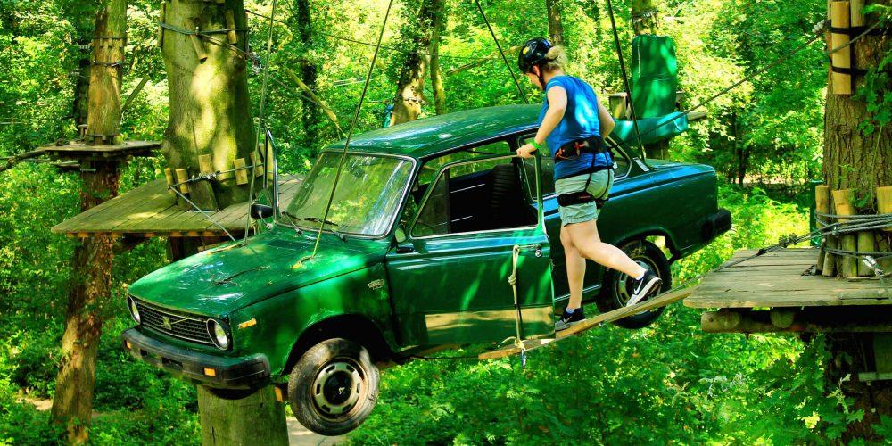 Rotterdam Kralingen Climbing Park Forest Fun