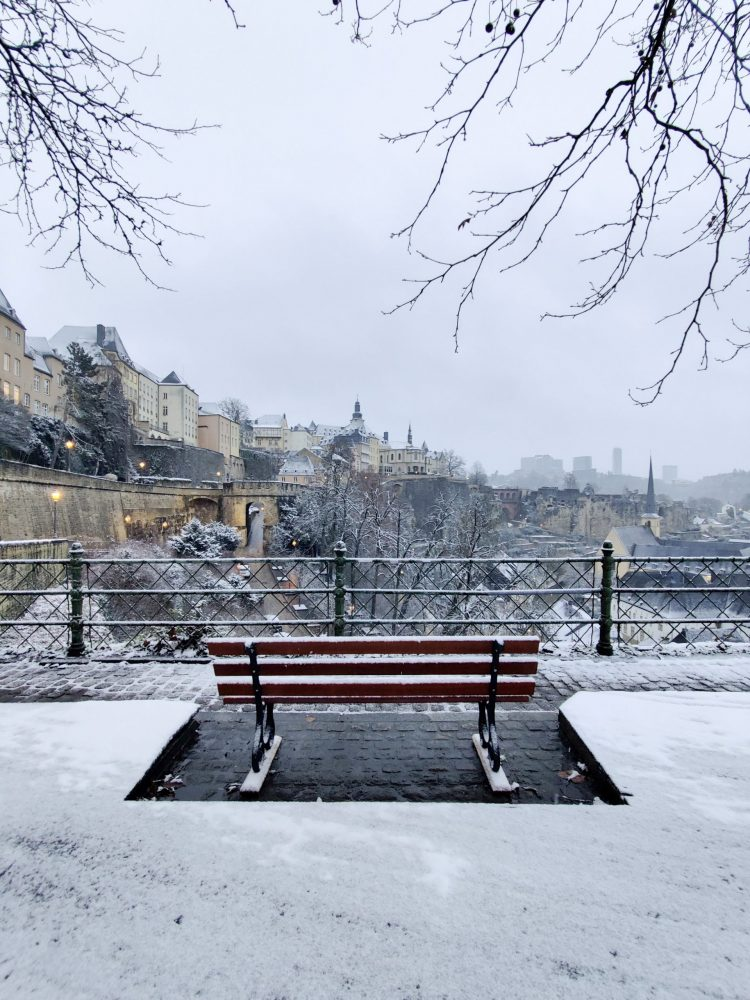 A bench looking towards the city covered in snow
