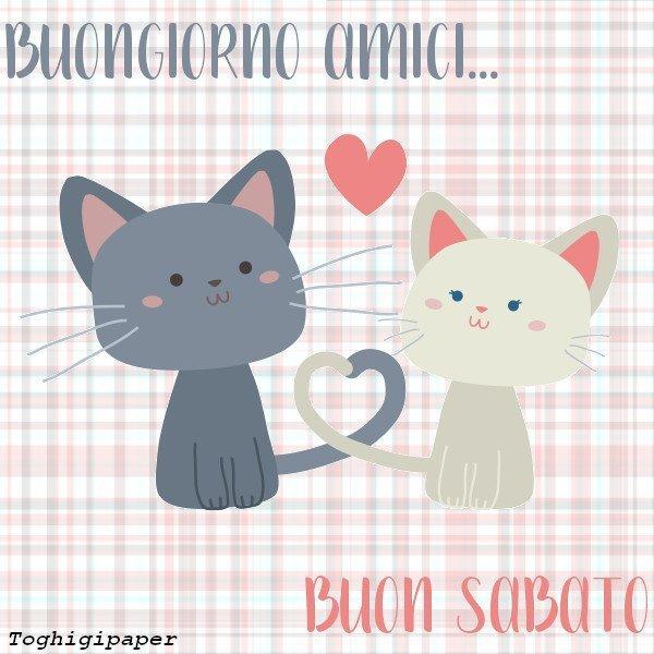 Buongiorno gattini