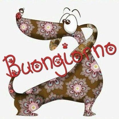 buongiorno cagnolino immagini nuove gratis whatsapp facebook