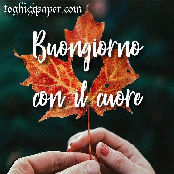 Buongiorno autunno belle e nuove immagini gratis WhatsApp