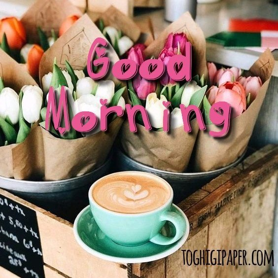 Good Morning new free images for WhatsApp, Facebook, Twitter, Pinterest