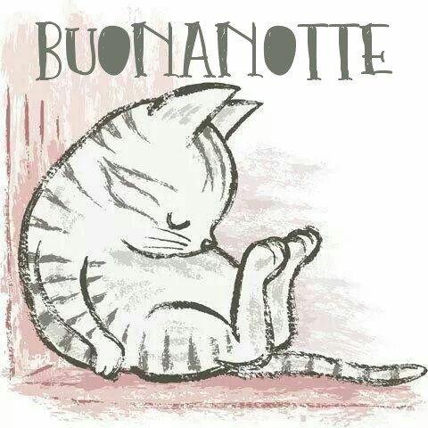 Gatti buonanotte nuove immagini gratis per Facebook, WhatsApp, Pinterest, Instagram, Twitter