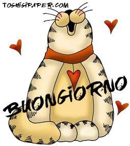 Buongiorno gatti immagini nuove gratis whatsapp facebook