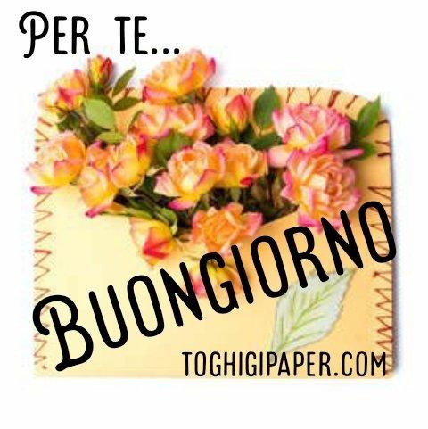 Buongiorno fiori nuove e belle immagini gratis per WhatsApp, Facebook, Pinterest, Instagram, Twitter