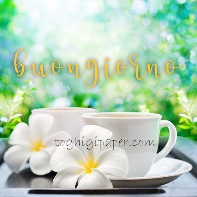 Caffè buongiorno buona giornata immagini gratis WhatsApp, Facebook belle e nuove