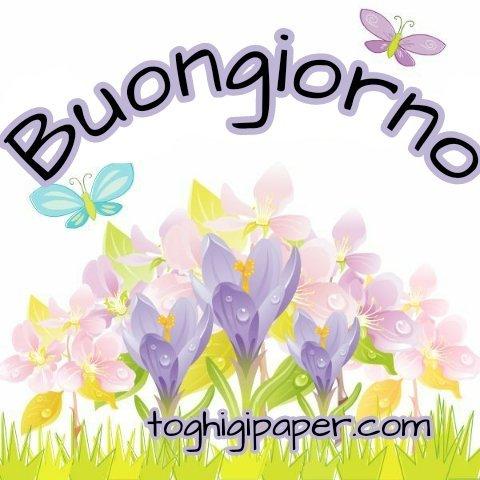 Primavera buongiorno fiori nuove immagini gratis WhatsApp, Facebook, Instagram, Pinterest, Twitter