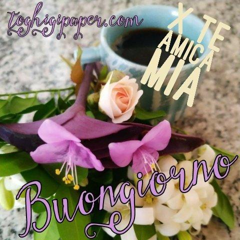 Caffè buongiorno primavera nuove immagini gratis WhatsApp, Facebook, Instagram, Pinterest, Twitter