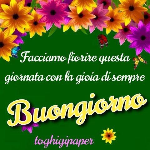 Fiori buongiorno frase nuove e belle immagini gratis per WhatsApp, Facebook, Pinterest, Instagram, Twitter