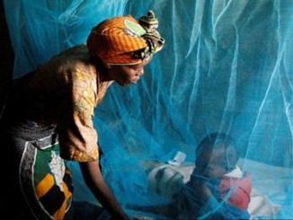 paludisme 2 0 Lutte contre le paludisme: le Togo fait des progrès