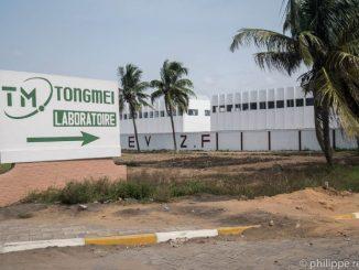 Tongmei e1531994253893