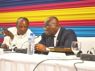 NANA CONDE BON 1 Feuille de route CEDEAO: Condé et Akufo-Addo attendus à Lomé la semaine prochaine