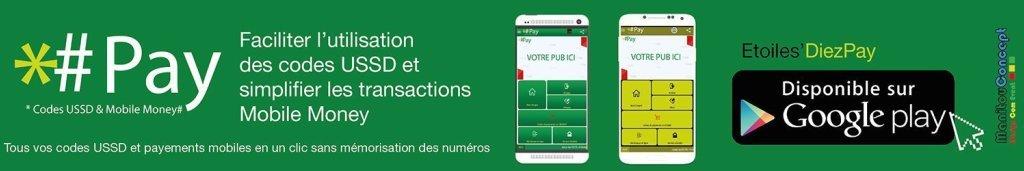 pay1329219498 Fintech: Les plateformes de Services Financiers Digitaux qui révolutionnent au Togo