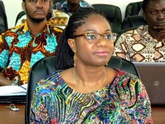 ministre cina lawson Togo: polémique autour du prix décerné à Cina Lawson aux Etats-Unis