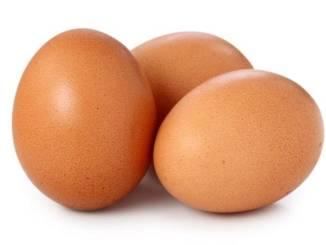 oeuf Togo: le prix des œufs vont baisser si…