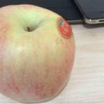 朝食代わりのリンゴの残念な話