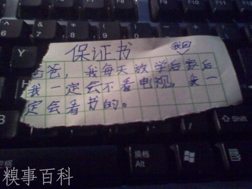 baozhengshuA