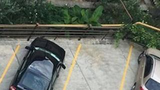 駐車禁止にしてもなんのその!隙あらば車を停める天才的な中国のドライバー