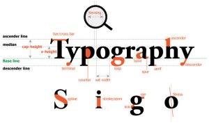Typography cơ bản #2 – cơ thể con chữ ( type anatomy )