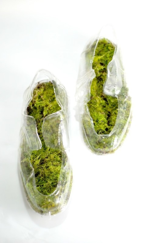 moss shoes/ sensoree