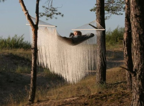 nest hammock/ ievalaurina